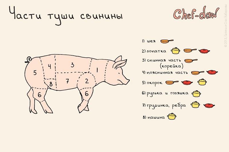 Части туши свинины Chef-daw