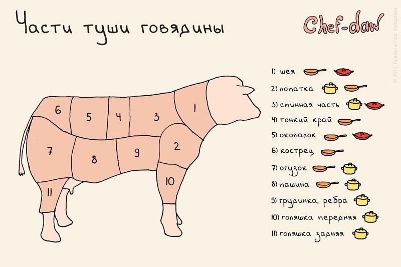 Части туши говядины Chef-daw